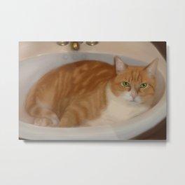 Cats love sinks! Metal Print