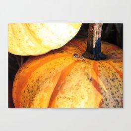 Buzzing Autumn Canvas Print
