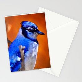 Bleu J Stationery Cards