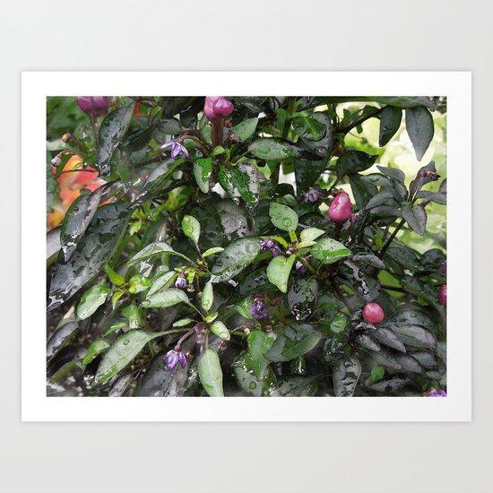Fresco Watercolor Flora Art Art Print