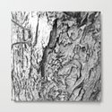 Tree Bark Black and White by steeleart1
