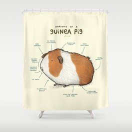 Anatomy of a Guinea Pig Shower Curtain