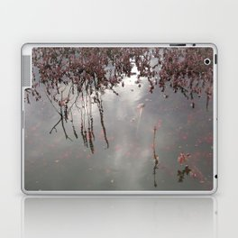 Cranberries Waiting To Be Harvested Laptop & iPad Skin
