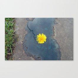 Blue Composition with Dandelion Canvas Print