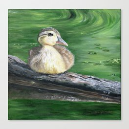 The Wood Duckling by Teresa Thompson Canvas Print
