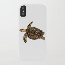 Hawksbill sea turtle (Eretmochelys imbricata) iPhone Case