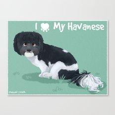 I Love My Havanese Canvas Print