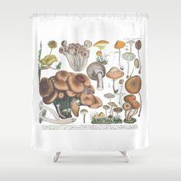 Vintage Mushrooms Shower Curtain