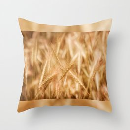 Golden ripe cereal ears grow on field Throw Pillow