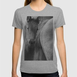 Original horses photo. Black & White, fine art, animal photography, landscape, b&w T-shirt