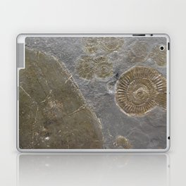 Fossil Laptop & iPad Skin