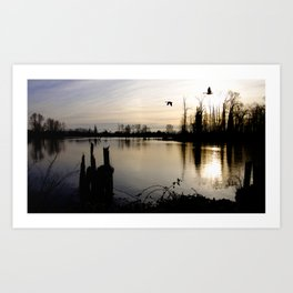 Sunset on the Fraser Art Print
