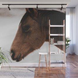 horse by Logan Weaver Wall Mural