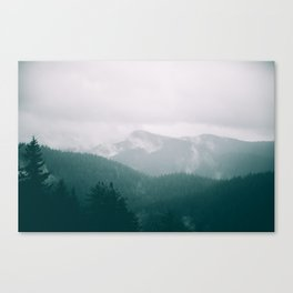 Forest Fog XVI Canvas Print