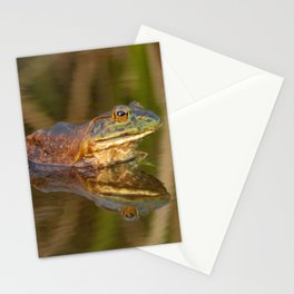 Bullfrog Reflections at Sunset by Reay of Light Photography Stationery Cards
