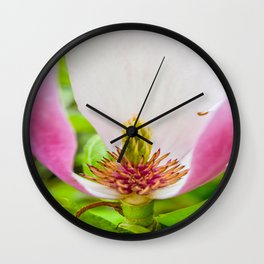 The Lost Gardens of Heligan - Pink Magnolia Wall Clock