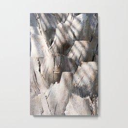 Palm Plates Metal Print