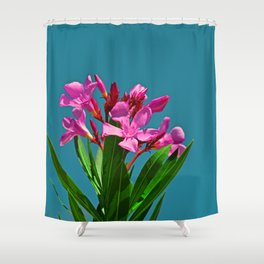 Pretty in pink under turquoise sky Shower Curtain