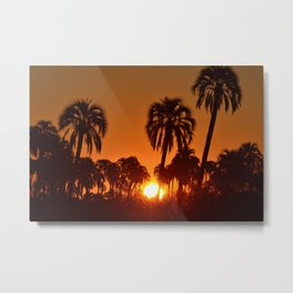 Sunset en Palmar Metal Print