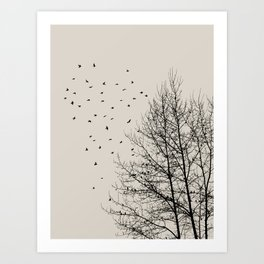 Come On Home - Graphic Birds Series, Plain - Modern Home Decor Art Print