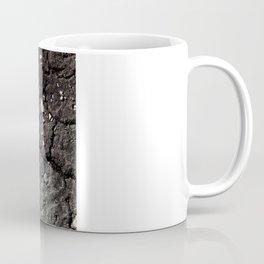 Dry Coffee Mug