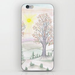 Paths to the Sunny Side iPhone Skin