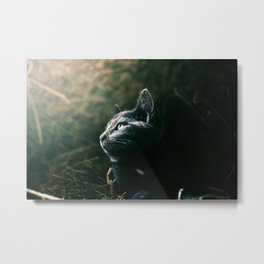 Glorious Kitty Metal Print