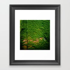 ivy takeover Framed Art Print