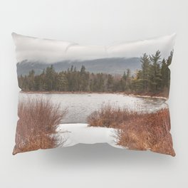 Winter Lily Pond Pillow Sham