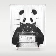 Bad panda Shower Curtain