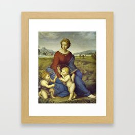 Madonna of the Meadows by Raphael Framed Art Print