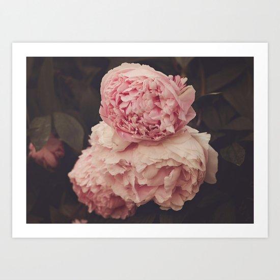 Pink Peony Trio Art Print