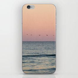 Pelicans at Sunset iPhone Skin