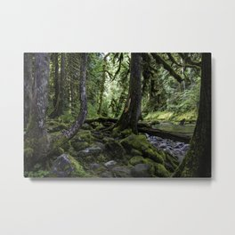 Green of the Forest Metal Print