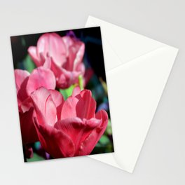 Pink Pyramid Stationery Cards