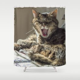 The laughing cat Shower Curtain