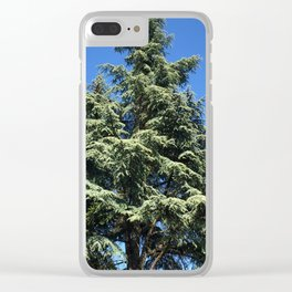 Kubota Garden tree from ground perspective Clear iPhone Case
