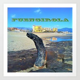 Fuengirola Art Print