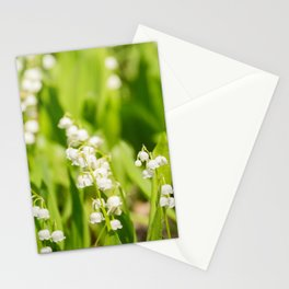 May Lily Blooming Stationery Cards