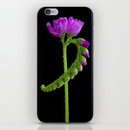 Drossera iPhone Skin