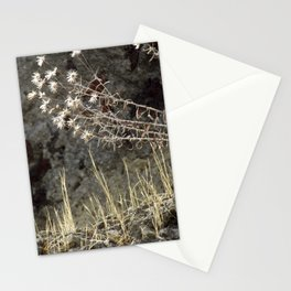 on herculaneum walls Stationery Cards