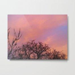 Pink Sky Metal Print