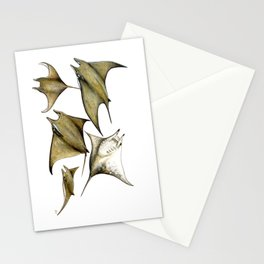 Chilean devil manta ray (Mobula tarapacana) Stationery Cards