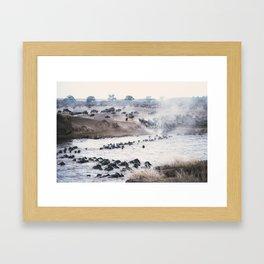 Ñu migration Framed Art Print
