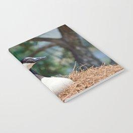 Nesting Canadian Goose Notebook