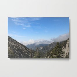 Forest High Metal Print