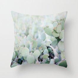 Arizona Springtime Throw Pillow