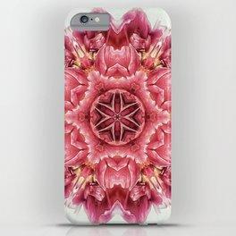 garden bulbs (pattern/pillow) iPhone Case