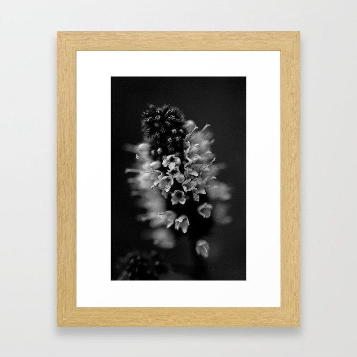 BW Beauty Framed Art Print