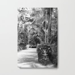 Hay under palm trees Metal Print